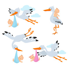 Cartoon flying storks and stork birds carrying baby vector set