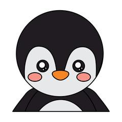 penguin cute animal icon image vector illustration design
