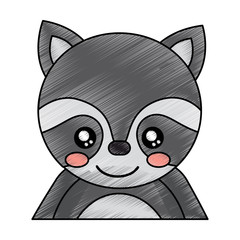 cute portrait raccoon animal baby vector illustration drawing design