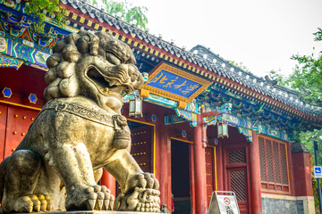 Chinese guardian lion. Located in west gate of Peking University, Beijing, China.