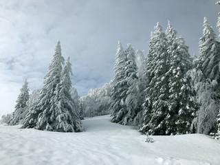Velebit landscape in winter