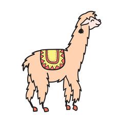 Vector, isolated outline cartoon baby llama.