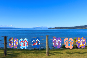Summer lake Taupo view