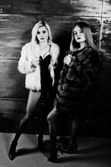 Two elegante blonde girls wear on fur coat and combi dress posed against steel wall on studio.