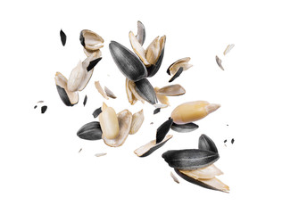 Peeled sunflower seeds are frozen in the air on white background