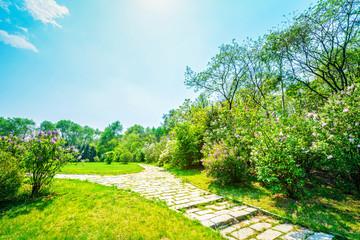 Keuken foto achterwand Lime groen Park in early spring. Located in Shenyang Botanical Garden, Shenyang, Liaoning, China.