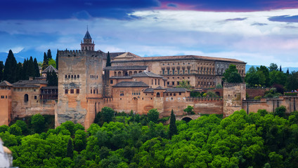View of the Nazaries palaces of Alhambra.  Granada