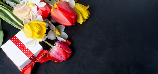 Bouquet of red tulips, daffodils and gift on the black background