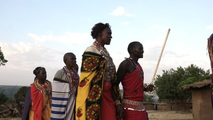 Wall Mural - low angle shot of a group of maasai women and men from a village near maasai mara dancing in pairs