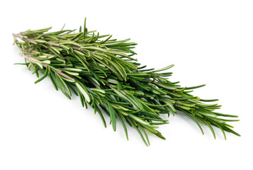 Fresh rosemary leaves isolated on white background cutout