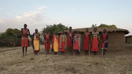 Wall Mural - wide view of a group of maasai women and men singing at a village in kenya
