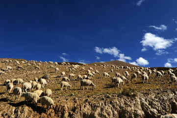 The scenery of Zhada County in Tibet