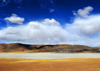 The scenery of Zhongba County in Tibet