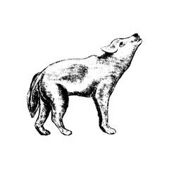 wolf icon grunge style