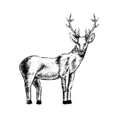 deer icon grunge style