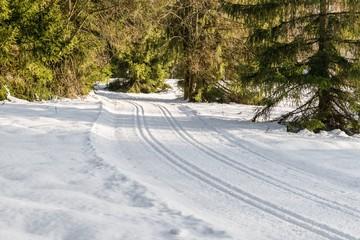 Gespurte Langlauf Loipen im Bayerischen Wald, Deutschland