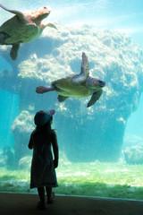 Silhouette enfant Aquarium