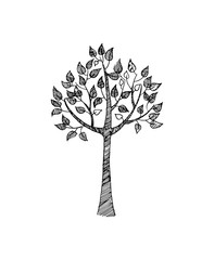 Hand Drawn Sketch of Tree in Black and White Color