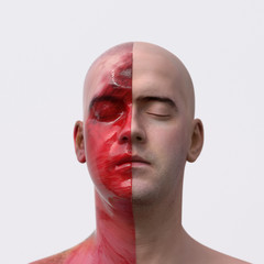 artificial man with a divided face