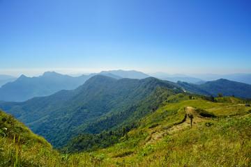 Landscape of Phu Chee Fa, Chiang Rai Thailand
