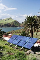 Solar panels in tropical climate scenery