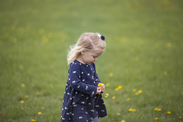 Cute girl holding flowers while standing on field at park