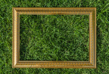 Golden wood frame on green grass background
