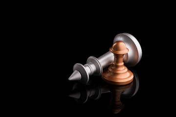 chess king with pawn