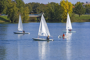 Tuinposter Zeilen Regatta sailing of small boats on the lake