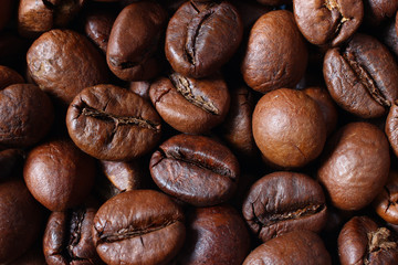 Beautiful brown coffee beans close up