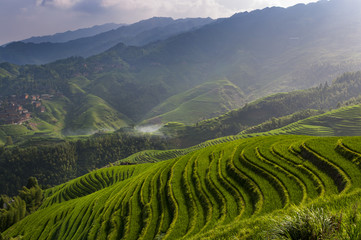 Tuinposter Rijstvelden Beautiful view of the Longsheng Rice Terraces near the of the Dazhai village in the province of Guangxi, China; Concept for travel in China