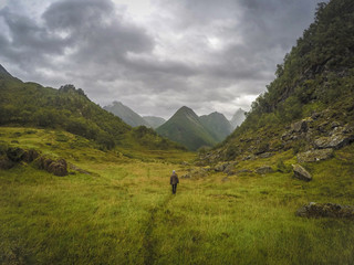 Man hiking in meadow in valley, Urke, More og Romsdal, Norway