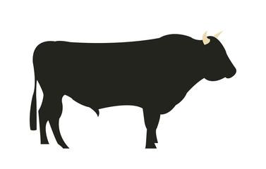 Wagyu Chilean bull silhouette
