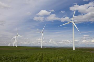 Wind turbines at Snake River Wind Facility, Lower Snake River, Washington, USA