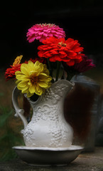 Zinnias in a pitcher