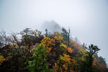 Rain Mt. Seorak Gongryong