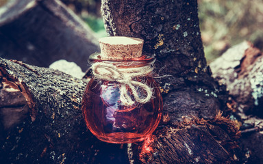 Sorcery potion in the forest. Love Potion. Magic and Sorcery