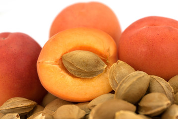 Aprikosen, Aprikosenkerne