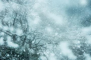 雪景色 冬イメージ