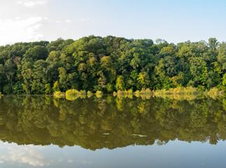 Wall Mural - Lake Bank Reflection on the Lake