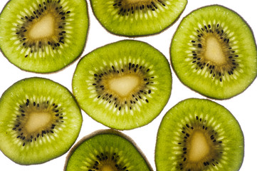 Fresh kiwi fruit slice  actinide