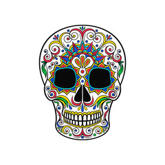 Day of The Dead Skull, sugar skull with floral ornament vector Illustration