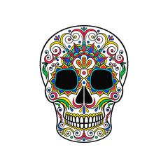Day of The Dead Skull, sugar skull with floral ornament vector Illustration