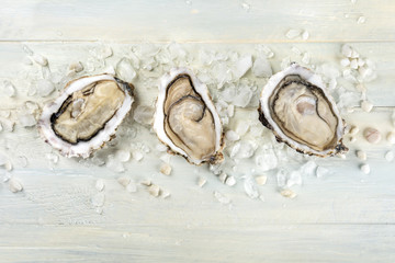 Overhead photo of oysters on ice with copy space