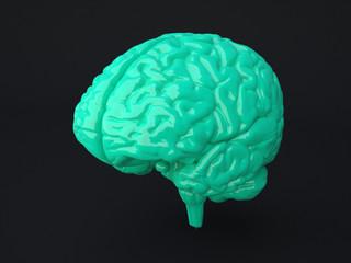 Menschliches Gehirn 3D Illustration