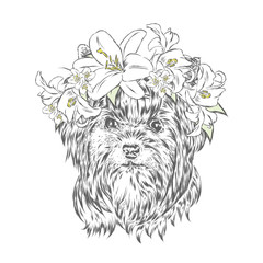 Cute puppy vector . York in the floral wreath .