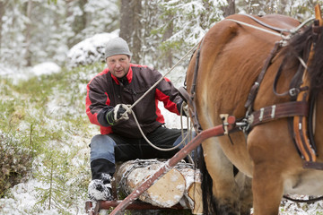 Horse pulling man sitting on wood in snowy forest