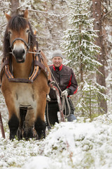Smiling man standing behind horse in snowy forest