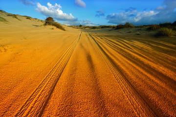 Car tire tracks in the desert.