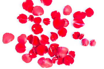 Valentines Day Made of Red rose petals Isolated on White Background.